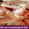 Vem Por Ai no Capítulo da Novela Avenida Brasil, Terça 16/10 Prévia: Como o filho, Nilo morre no lixão. Confira no resumo e fique por dentro das novidades dos últimos […]