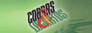 Novela Cobras e Lagartos resumo próximos capítulos. Confira as novidades que vem por ai em Cobras e Lagartos, resumo semanal atualizado Vale a Pena V